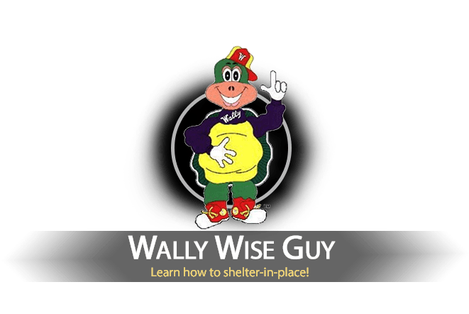 Wally Wise Guy
